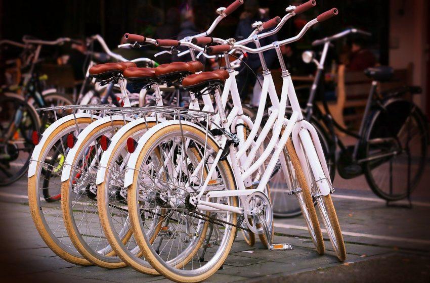 Vente de vélos à Colmar